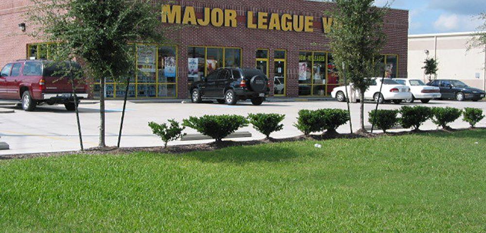 Major League Video store front